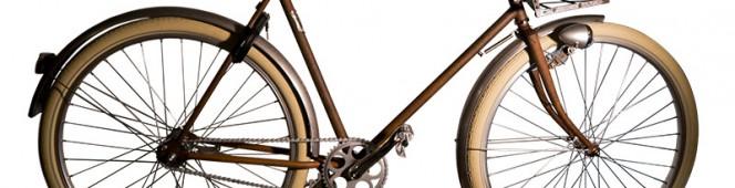 Rust Customcykel